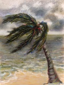 Original Painting of a Palm with its fronds blown away