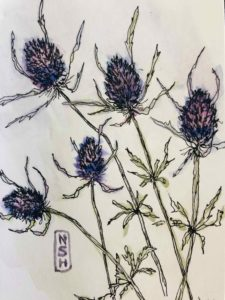 These thistle were in Larry's funeral arrangement from the family